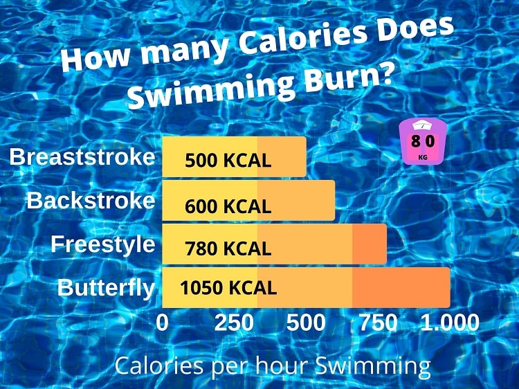 Burned Calories How Many Calories Do You Burn Swimming